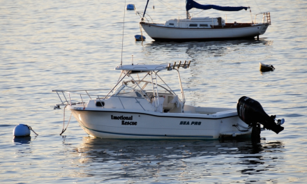 Emotional Rescue – Sea Pro 24′