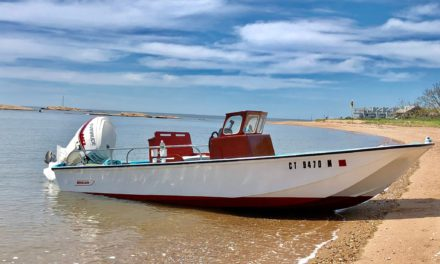 No Name – Boston Whaler 1967 Nauset