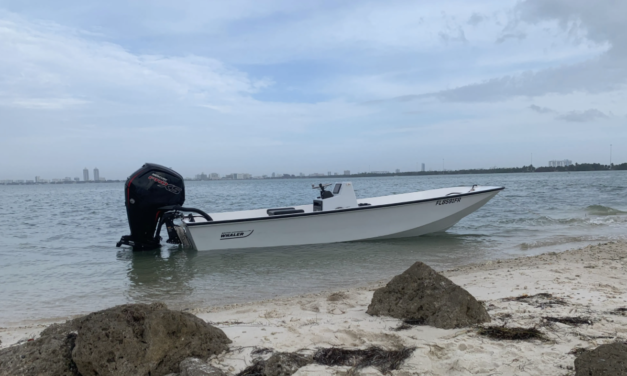 No Name – Boston Whaler 17′